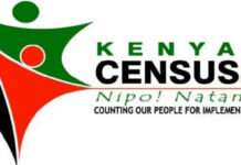 2019 Census Jobs