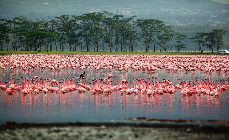 top 10 Kenya tourist attractions