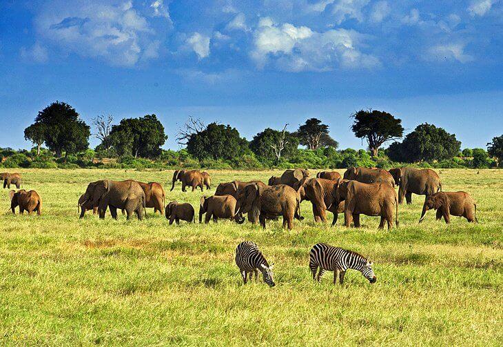 top 10 Kenya tourist attractions