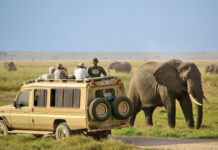 tourism in Kenya facts and figures