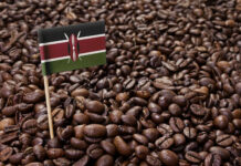 list of interesting facts about Kenya