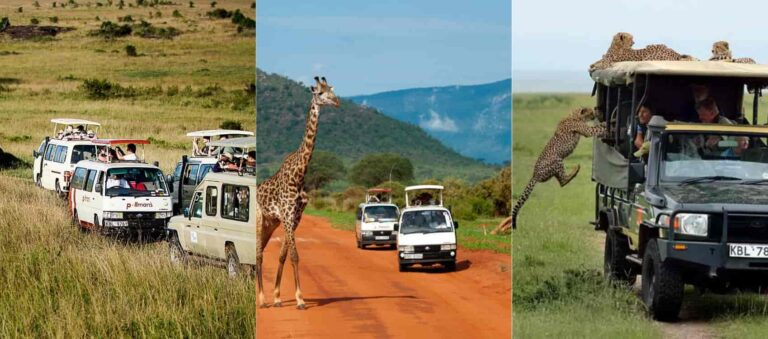400+ Travel Agencies & Tour Companies in Kenya