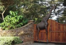 Adventurous places to visit in Nairobi
