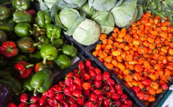 How to start a farming business in Kenya