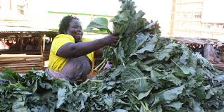 Crop farming in Kenya