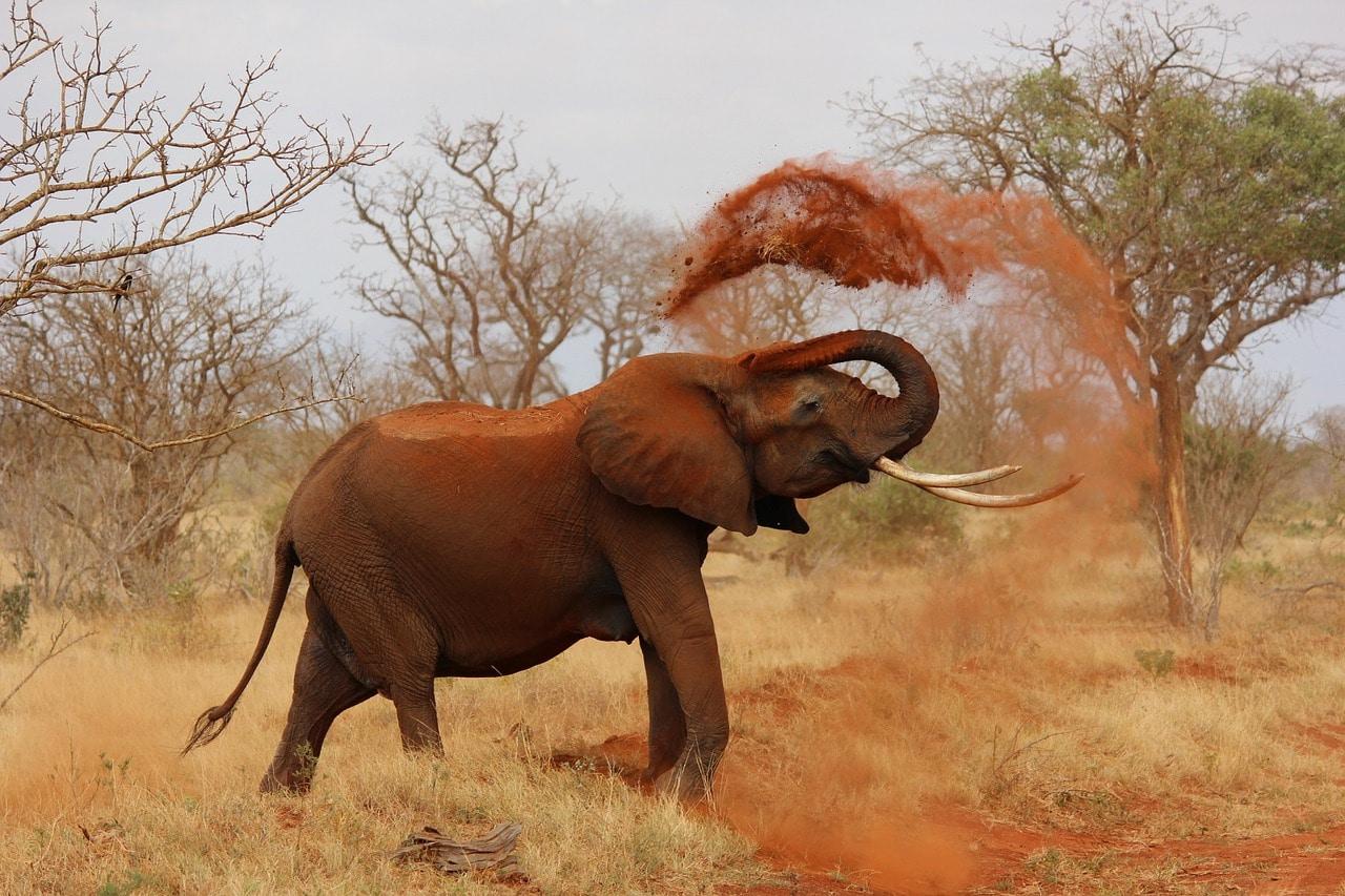 10 Beautiful Places to Visit in Kenya